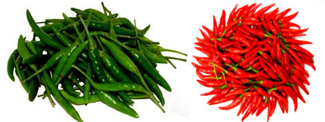 Fresh Green Chilli - Grace Tradelinks