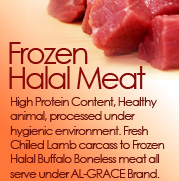 Frozen Halal Meat